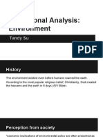 institutional analysis  environment