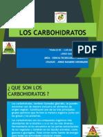 Los Glucidos o Carbohidratos