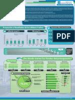 infografia 2015