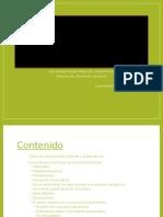 Economainformalysubterrnea 121030121059 Phpapp02 (1)