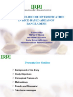 Rural Livelihood Diversification in Rice-based Areas of Bangladesh