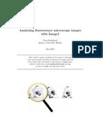 Analyzing Fluorescence Microscopy Images