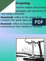 Human Evolutions