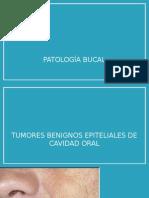 patologabucal-130924214052-phpapp02