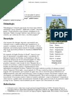 Pinhão-manso – Wikipédia, A Enciclopédia Livre