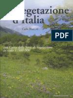 2010 Vegetazione d'Italia - Sicilia (Su LIBRO) Copia