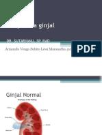 Neoplasma Pada Ginjal