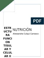 Con Relación a La Magnitud Del Déficit Nutricional y El Lapso de Tiempo en Que La Desnutrición Ha Ocurrido Se Clasifica En