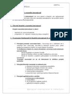 Examen Dreptul Interna Ional Al Comer Ului