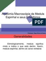 Anatomia Macroscópia Da Medula Espinhal e Seus Envoltórios