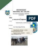 """Monitoreo de Agua, Sedimentos y Roca en La Laguna """"La Milagrosa"""" – Chilca – Cañete"""