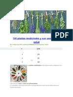 130 Plantas Medicinales y Sus Usos Para La Salud