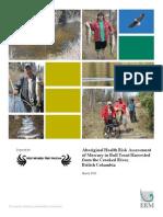 Aboriginal Health Risk Assessment
