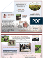 Tall Grass Bison Brochure