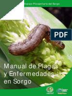 folleto_sorgo_11
