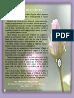 P. Dávila (en El Santuario de Fátima)