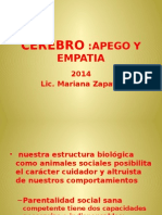 Cerebro Apego Empatia