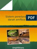 Circulatory in Frog