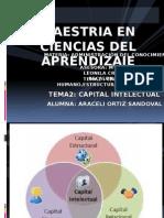 Diapositivas Del Capital Humano, Estructural y Racional