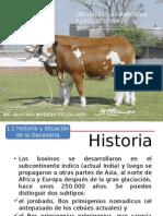 1.1 Historia de Los Bovinos