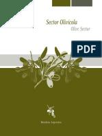 Folleto sectorial olivicola.pdf