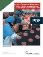 Violacion Sistematica DDHH Salmonicultura en Chile