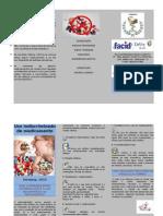 Folder Estagio