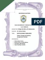 Instituciones Familiares Tutela y Consejo de Familia y Colocacion Familiar