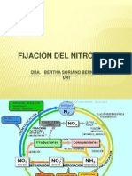 Fijación de nitrógeno