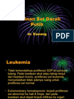 ggn sdp.ppt