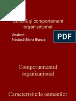 cultura si comportament organizational