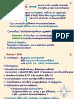 05_fisiologia potatura