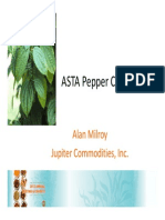 Pepper Report Final
