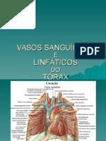 5-Vasos Sanguíneos e Linfáticos Do Tórax - Alunos
