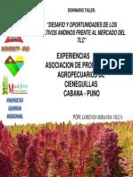 Experiencia_exitosa_en_Puno.pdf