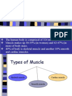 Muscle Structure and Function (1)