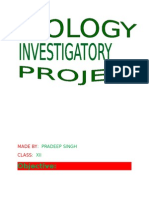 Biology Investigatory Project 121126091042