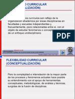 Flexibilidad Curricular Conceptualizacion1-i