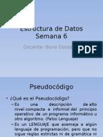 Estructura de Programación6