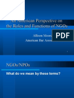 American Perspective on NGOs