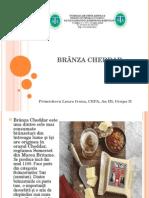 Primicheru Laura Ivona- Branza Cheddar.ppt