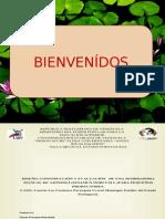 Diseño, construcción y evaluación de una sembradora manual de ajonjolí