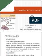 04_HOMEOSTASIS Y TRANSPORTE CELULAR.pdf