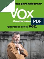 Programa VOX 100 Medidas