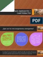 Actividad 2 – Microorganismos Emergentes y Campyrobacter