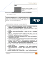 Dct-001.in Perfil de Cargo Asesor en Prevencin de Riesgos