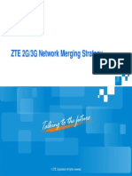 12_ZTE 2G3G Network Merging Strategy_V3.30_200805