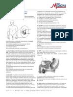Sistema Reprodutor (1)