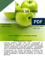 PMAC PP
