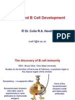 Topic 3 B Cell Development